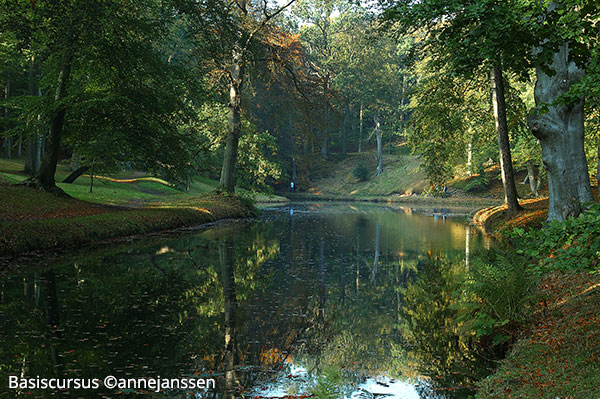 Intensieve Fotografie Cursus Basis Alphen ad Rijn